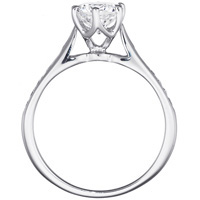 Nadia Diamond Channel Set Engagement Ring and Band Set (.30 ctw.)