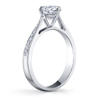 Delia Cathedral Diamond Ring (.08 ctw.)