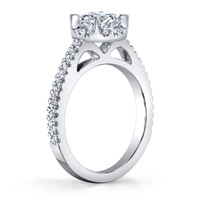Virginia Diamond Halo Ring (.22 ctw.)